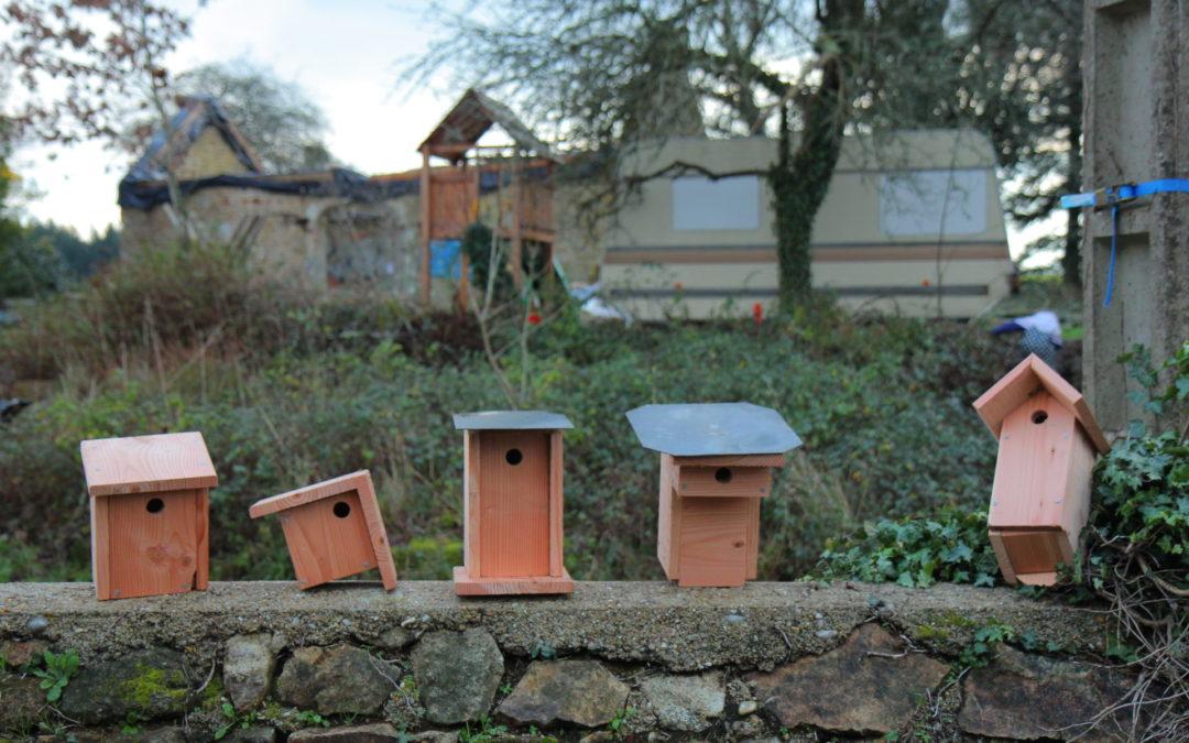 Coup de pouce aux oiseaux du hameau