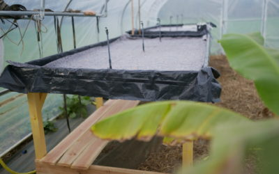 Les Jardins de Brangoulo bientôt opérationnels pour 2021 !